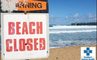 Beach Closed_SAH Logo