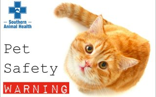 pet-safety-warning